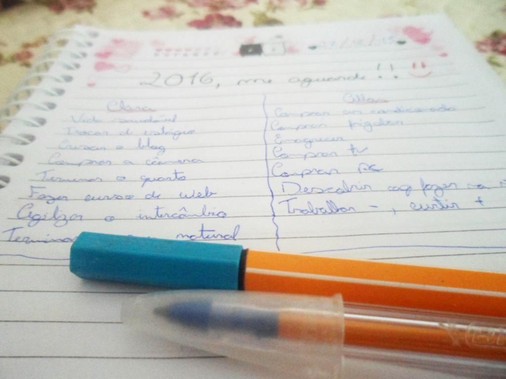 Metas 2016